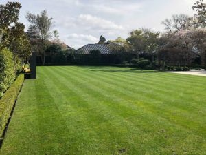 After lawn has been mowed