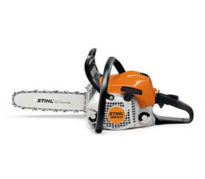 Chainsaw pruning