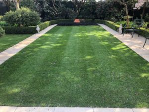 Lawn mowed by Wright Lawn Care